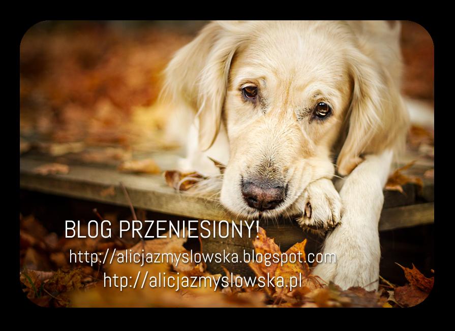 http://alicjazmyslowska.blogspot.com BLOG PRZENIESIONY