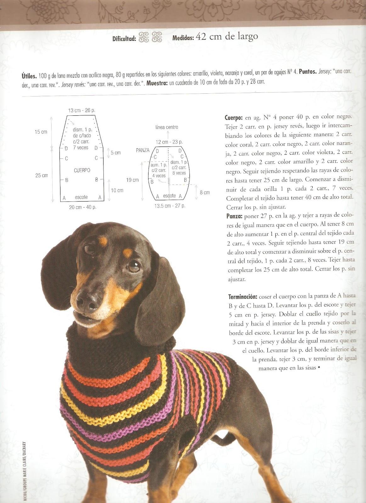 Patrones ropa TEJIDA para perros chihuahua Buscar con Google