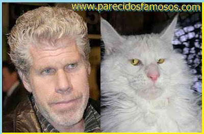 Ron Perlman y gato