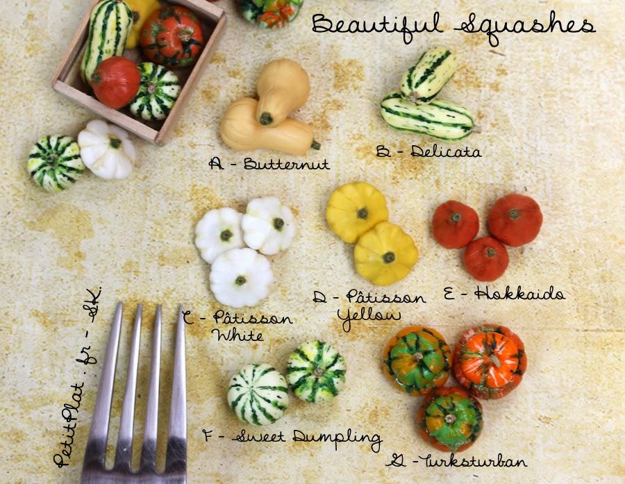 Beautiful squashes : Butternut, Delicata, Pâtisson, Hokkaido, Sweet Dumpling, Turksturban