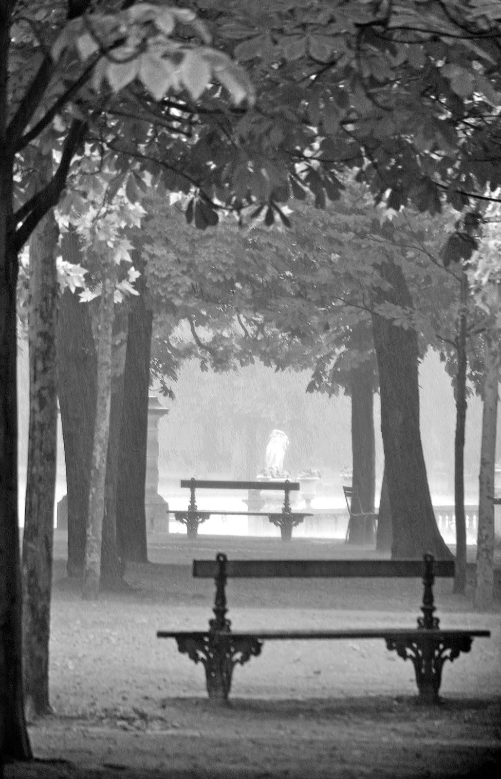 Exercices de styles que de pluie sur paris jardin for Jardin noir et blanc