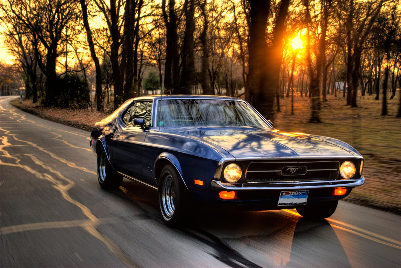 Ford Mustang HD Wallpapers ~ HD Car Wallpapers