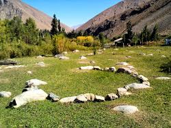 Jardines Rusticos Pisos de Piedra, Oregano de Montaña, Quillalles