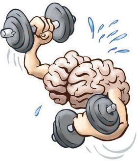 Brain Exercise2