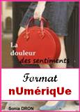 http://leschapitresdeso.blogspot.fr/p/format-poche.html
