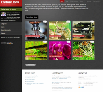 picture box wordpress theme