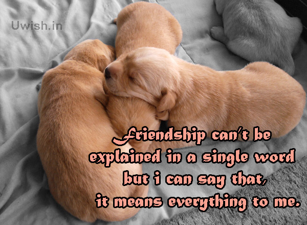 Friendship is everything Quotes on Friendship e greeting cards and wishes