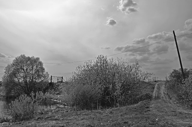 Образцово Церковь речка болото лягушки деревня село поселок весна лето