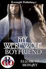 My Boyfriend Is...Book 1
