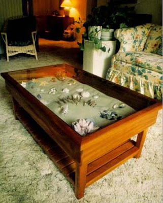 coffee table displaying shells in sand