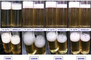 gen cerveza