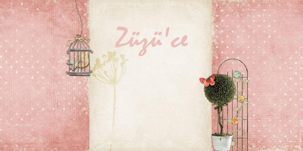 Züzü'ce