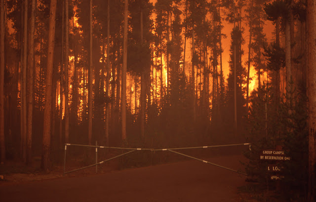 """Strange lightning storms"" causing widespread bush fires in the US and Canada  Yellowstone_during1"
