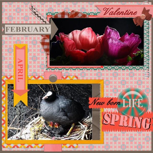 Jan.2016 - lo 2 - Valentine - Spring