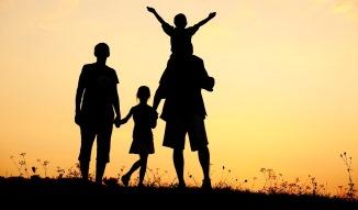 PNL vrea modificarea textului inițiativei cetățenesti privind redefinirea familiei în Constituție..