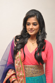 Priyamani Pictures at Chandi Platinum Disc Event