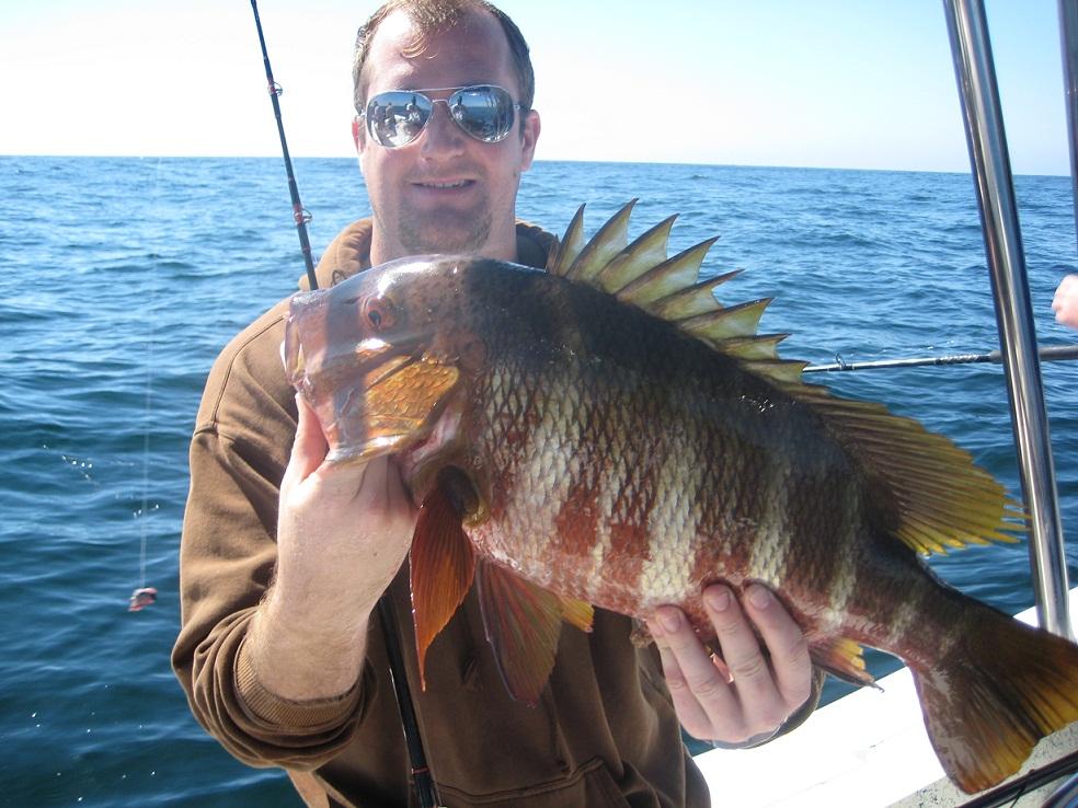 Punta mita fishing for Punta mita fishing