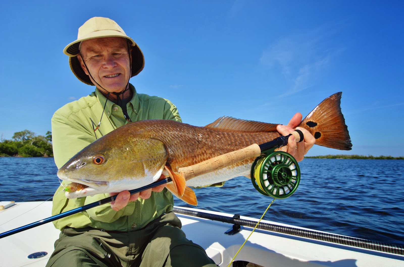 The pine island angler pine island fishing report for Island current fishing report