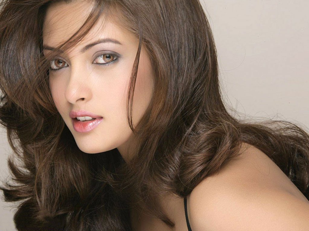 riya sen hot wallpapers hot stills riya sen hot wallpapers cute photos