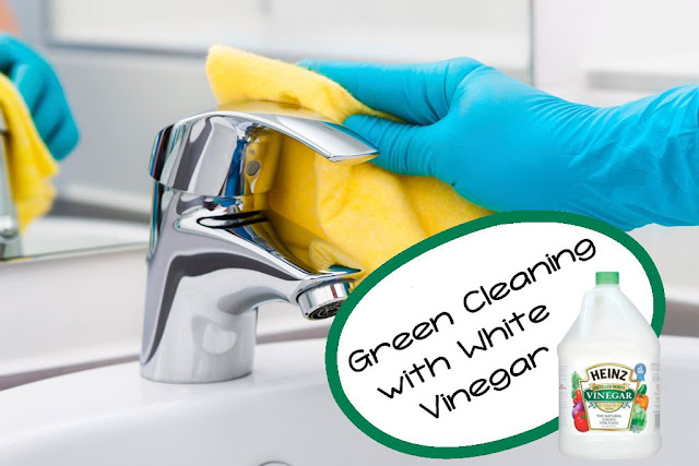 Green Cleaning with White Vinegar — a Modern Mrs.