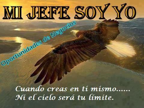 MI JEFE SOY YO