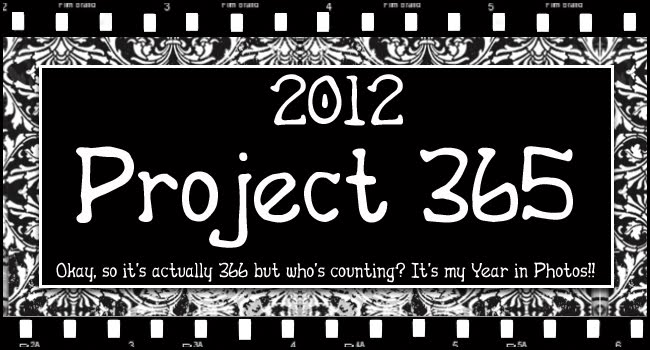 2012 Project 365