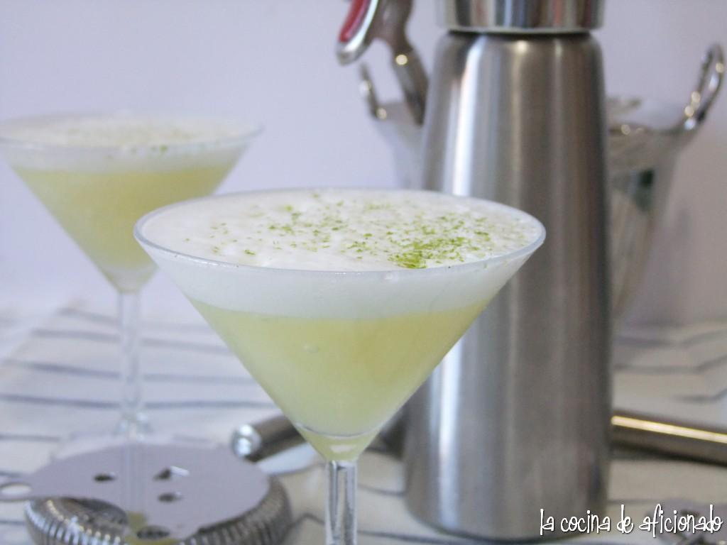 La cocina de aficionado espuma de gin fizz con lim n helado - Espuma de limon ...