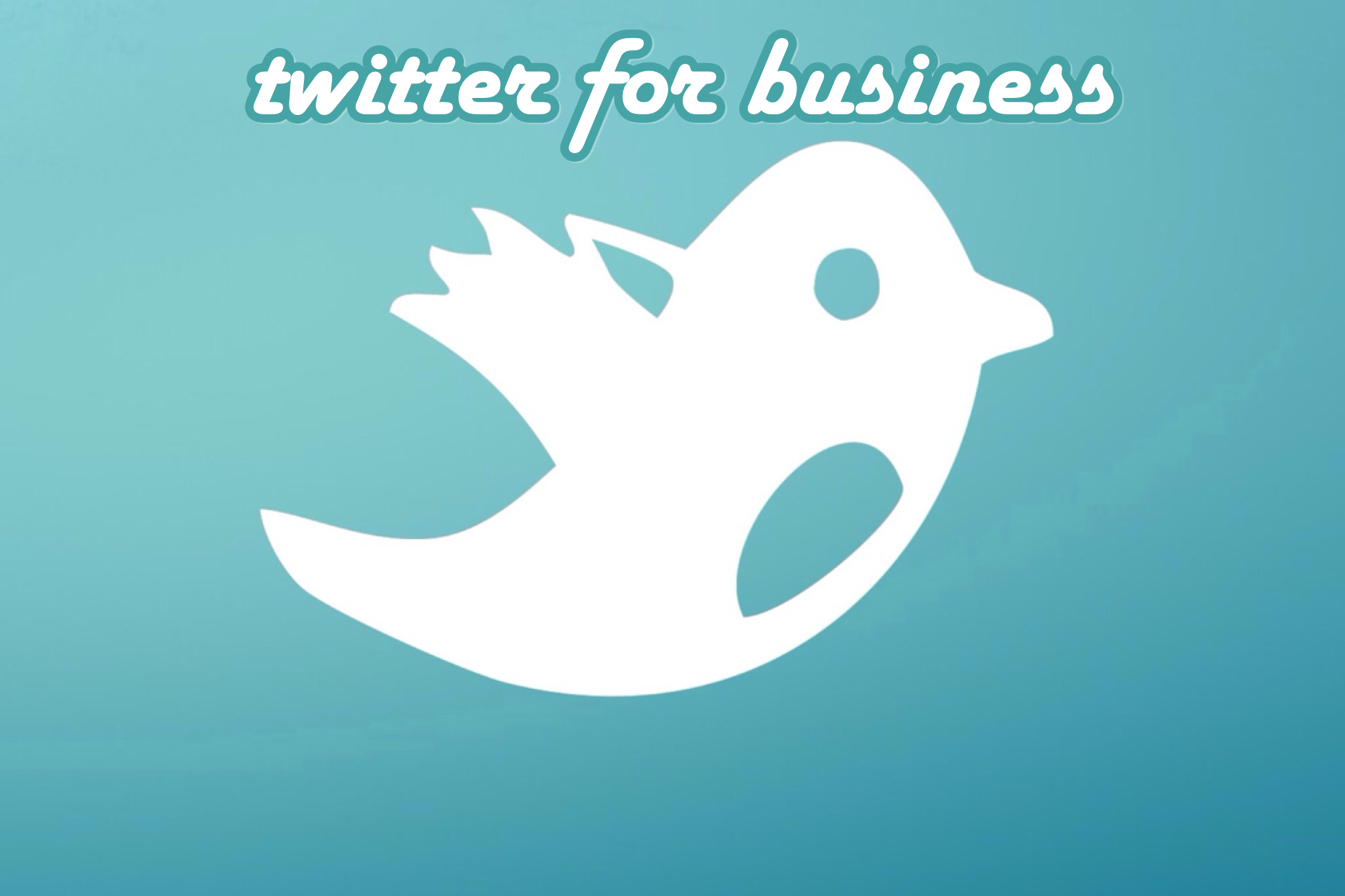 Business Guide to The Wonderful World of Twitter [INFOGRAPHIC]
