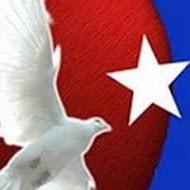 Plan de Acción aprobado en el I Encuentro Nacional de Asociaciones de Cubanos Residentes en España