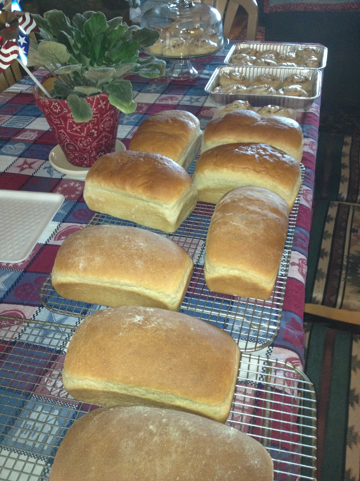 whole wheat bread at the bottom white bread in the