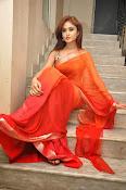 Sony Charista Glamorous in Saffron saree-thumbnail-14