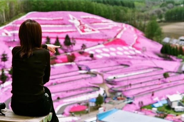 Keindahan Lembah Higashimokoto di Jepang