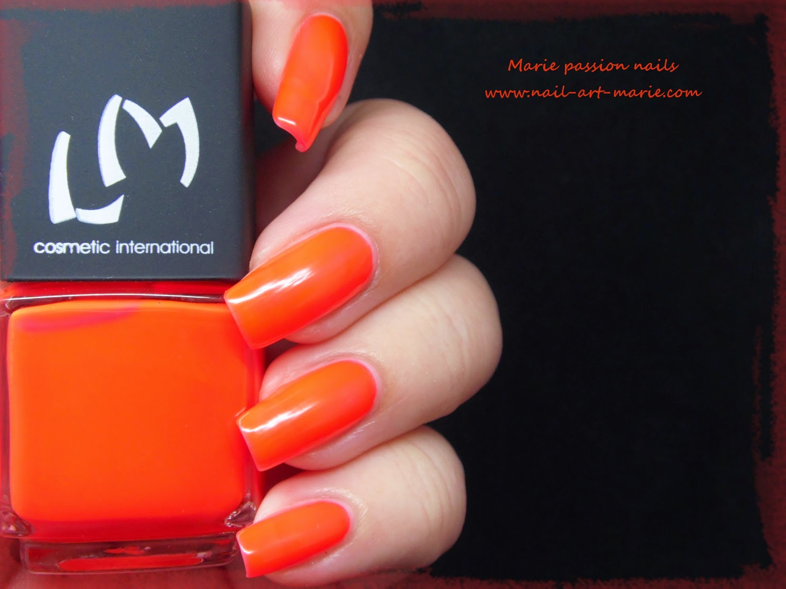 LM Cosmetic San Fransisco3