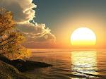 Shine Like Sun