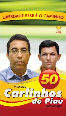 PSOL E 50 UM PARTIDO NECESSÁRIO
