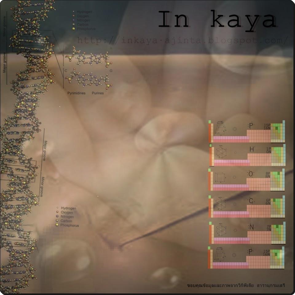 In Kaya Ajintai