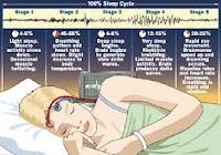Tahapan-tahapan tidur