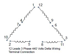 12 Leads Terminal Wiring Guide for    Dual       Voltage    Delta
