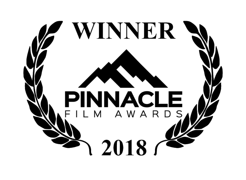 Joseph Strickland Wins Bronze Award For Best Director At Pinnacle Film Awards Event In Los Angeles