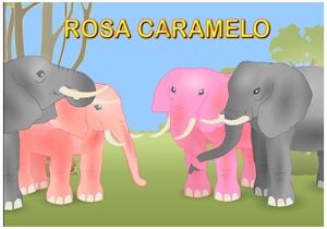 VÍDEO DEL CUENTO ROSA CARAMELO