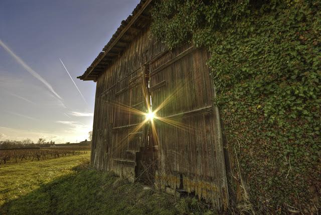 vignoble de st estèphe, effet lumiére hdr, soleil hdr, rayon soleil hdr, photo fabien monteil