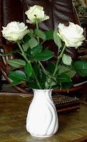 http://commons.wikimedia.org/wiki/File:White_Rose.jpg