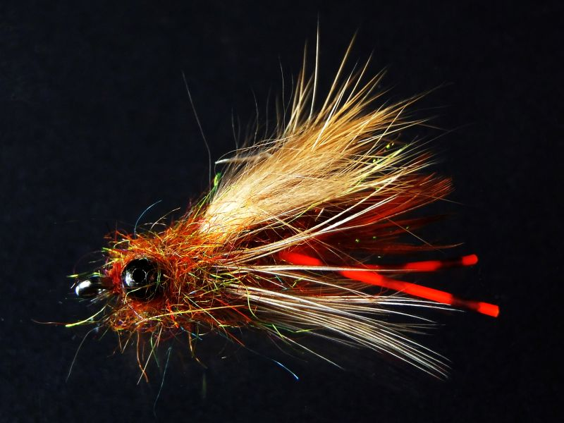 Roughfisher's Ruffian  carp fly