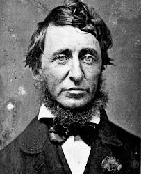 Line la Pas Fine n'a jamais lu David Thoreau…