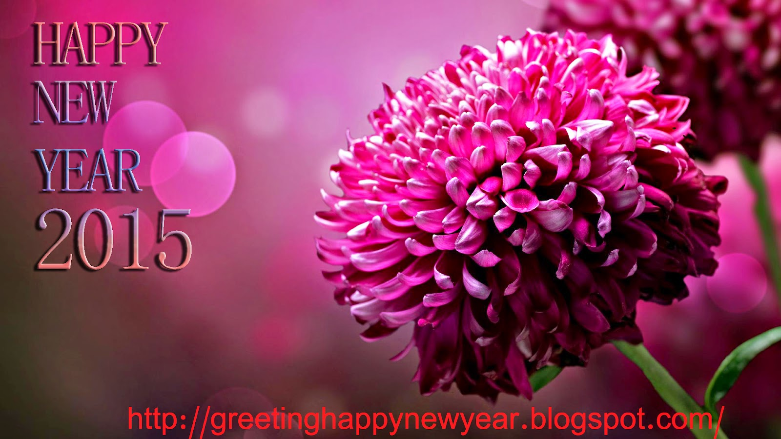 Happy New Year 2015 HD Rose - Wallpaper For Free