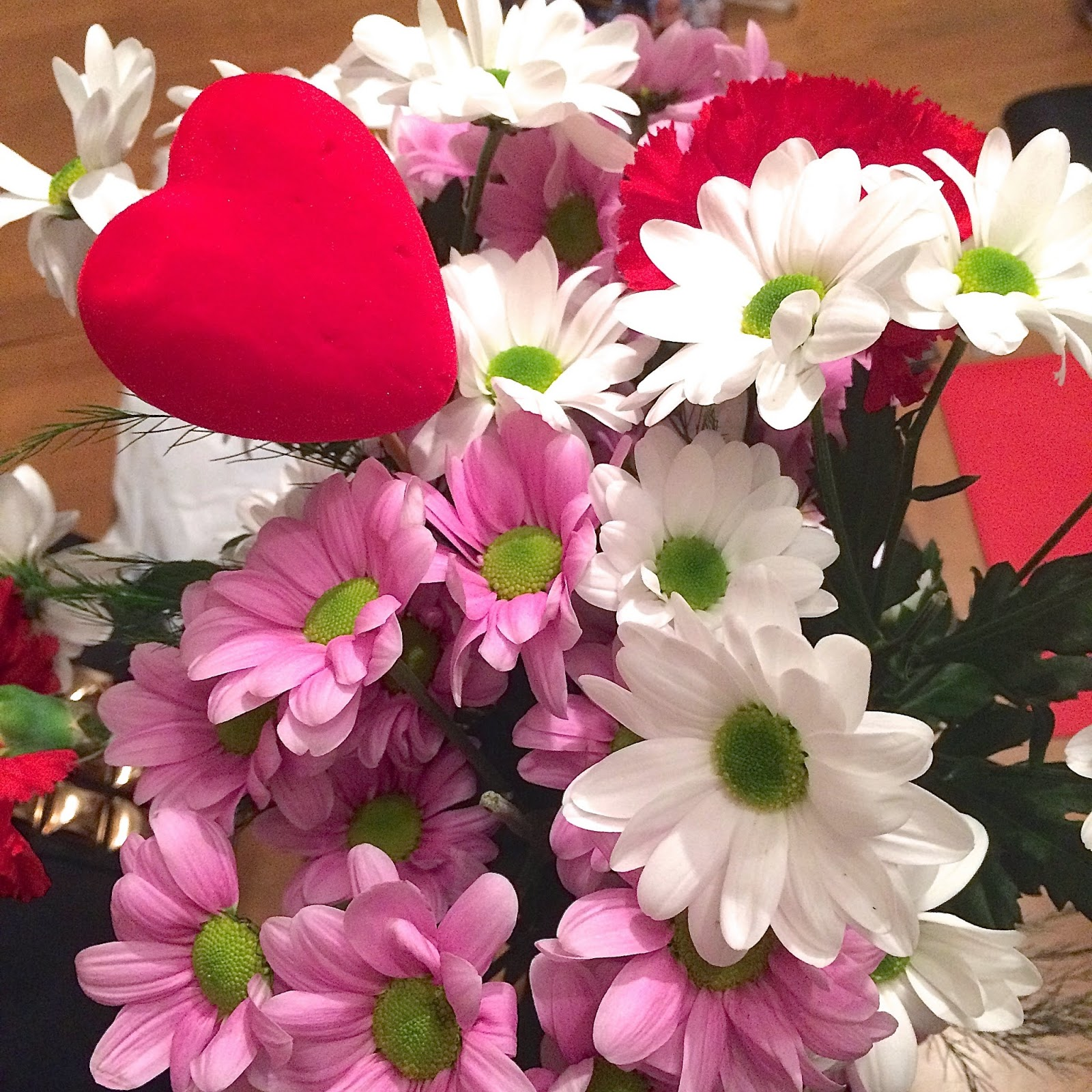 valentines, flowers, carnations, present, gift, girl,