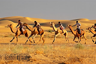 Rajasthan Travel