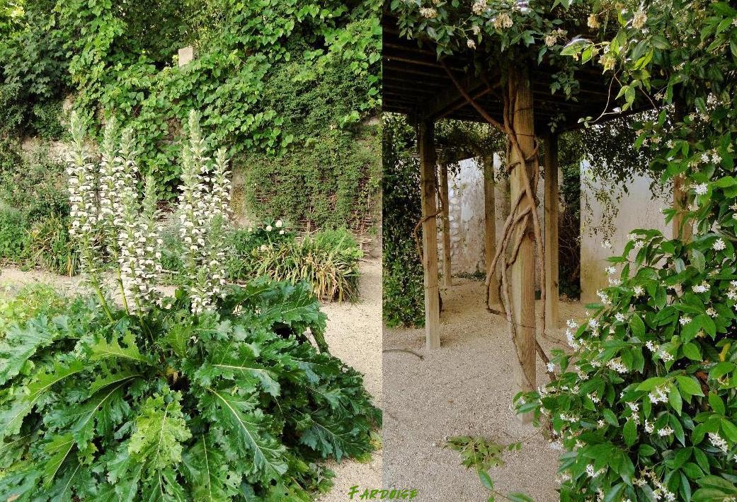 Les feuillets de fardoise le jardin m di val de valence for Le jardin restaurant valence