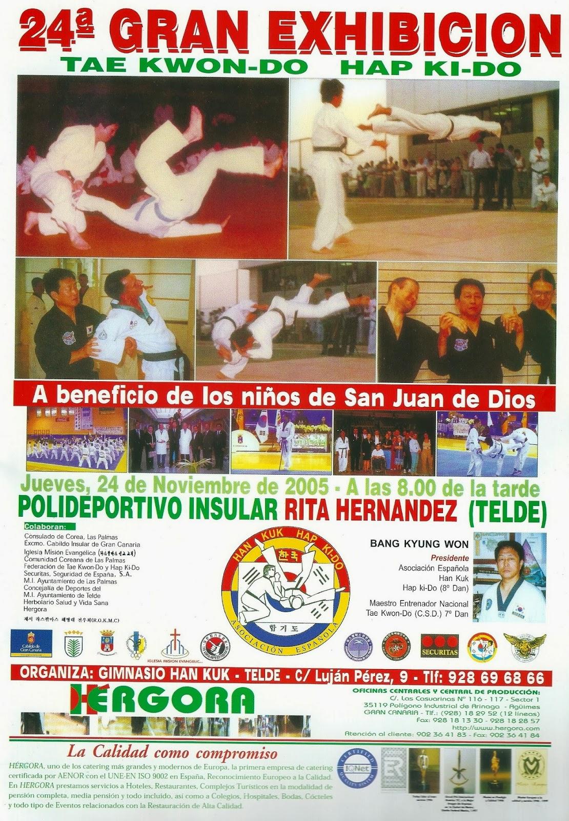 Gimnasio han kuk hapkido taekwondo a o 2005 presentaci n for Gimnasio telde