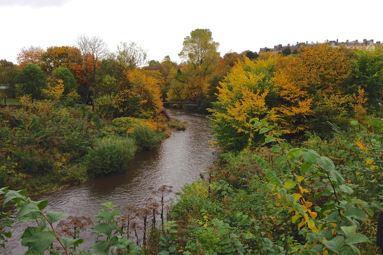autumn trees along the River Kelvin in Glasgow